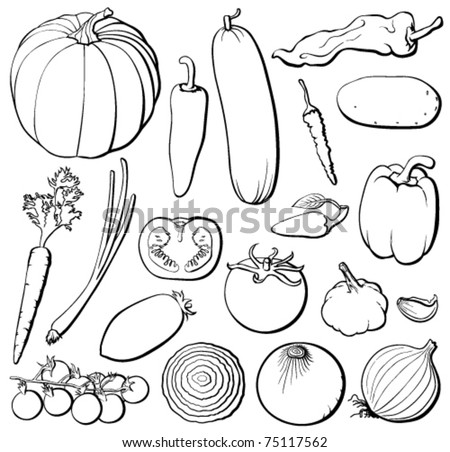 Vegetables set, black and white, each in separated layer. Vector illustration. - stock vector