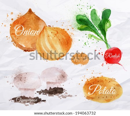 Vegetables set drawn watercolor blots and stains with a radishes, onions, potatoes, champignon - stock vector