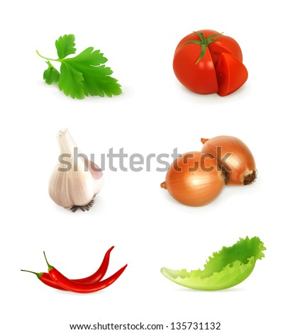 Vegetables set vector - stock vector