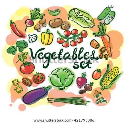 vegetables watercolor set with lettering
