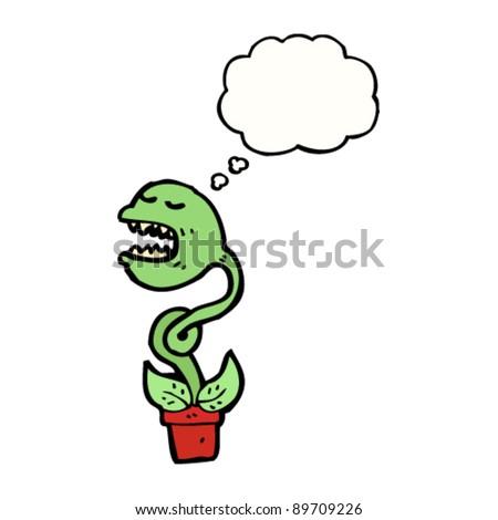 Venus flytrap  Wikipedia