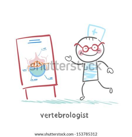vertebrologist tells a presentation on the spine - stock vector