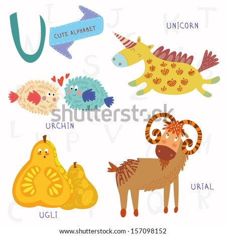 Very cute alphabet. A letter. Urial,urchin,unicorn,ugli fruit. Alphabet design in a colorful style. - stock vector