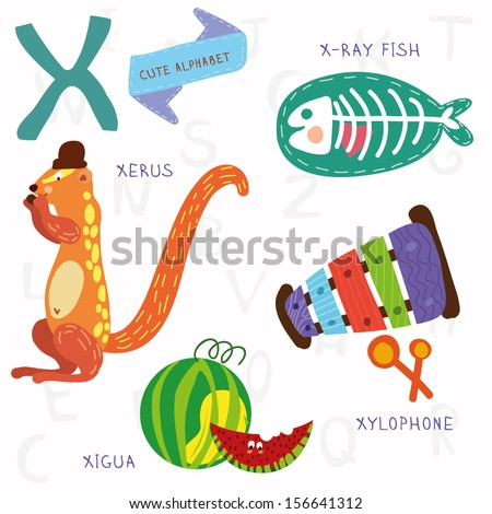 Very cute alphabet. A letter. Xerus,x-ray fish,xylophone,xigua. Alphabet design in a colorful style. - stock vector