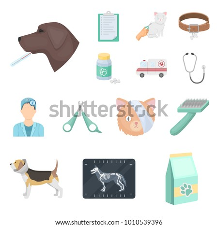 Cartoon Veterinary Stock Images Royalty Free Images
