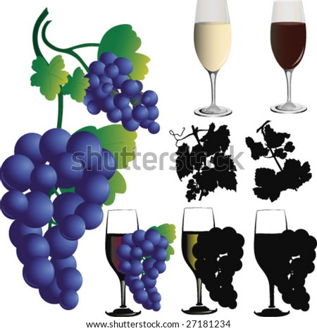 Vine and grapes-vector - stock vector