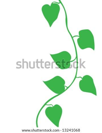 vine vector illustration stock vector 13241068 shutterstock rh shutterstock com vine vector image vine vector free download