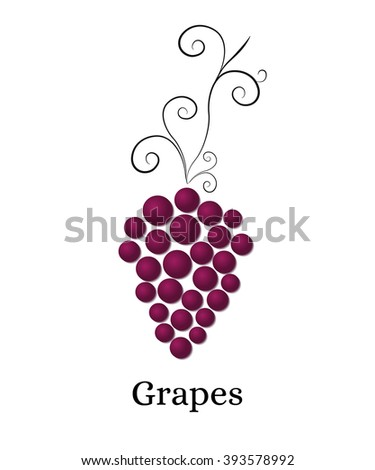 Vine with bunch of grapes. Logo for winery, wine store, wine menu. Round purple grapes. Healthy eating. Vitamins for health. Vector illustration. - stock vector