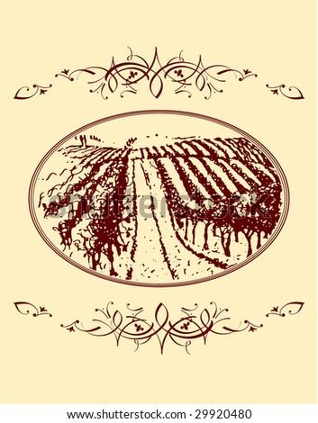 vineyard - stock vector