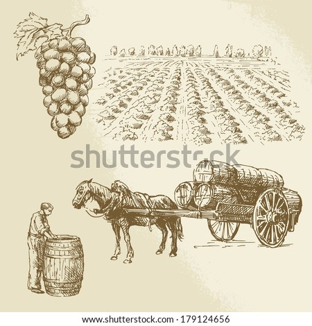 vineyard, harvest, farm - hand drawn collection - stock vector