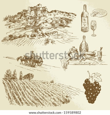 vineyard, rural landscape - hand drawn illustration - stock vector