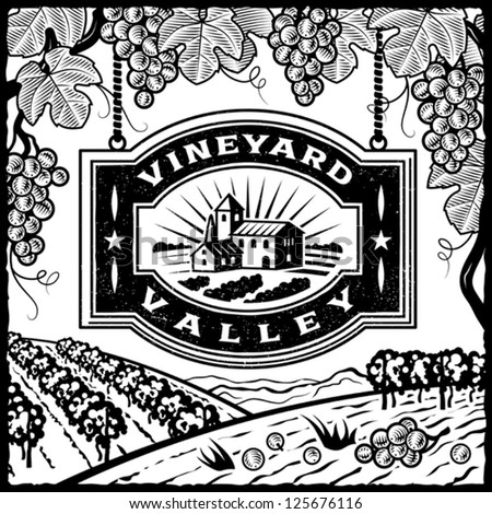 Vineyard Valley black and white. Editable vector illustration. - stock vector