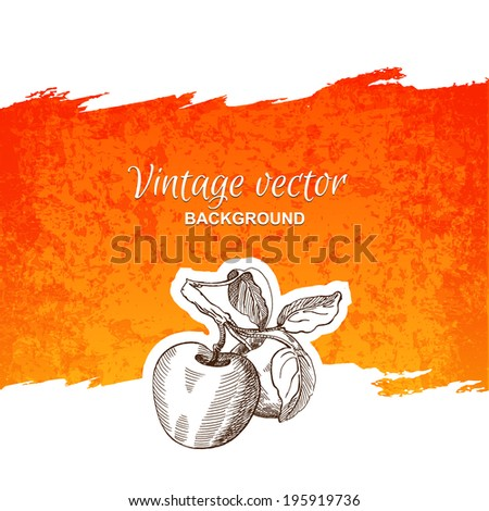 Vintage apples - stock vector