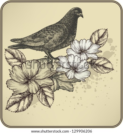 Vintage background with bird dove and blooming roses. Vector illustration. - stock vector