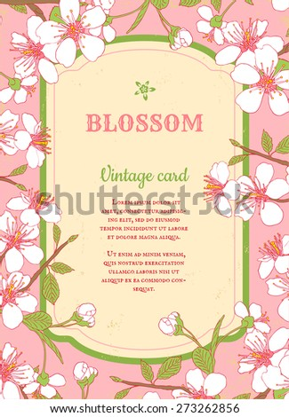 Vintage card with cherry blossom - stock vector