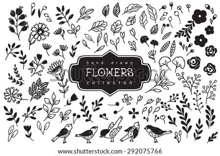 Vintage decorative flowers and birds set. Hand drawn vector design elements - stock vector