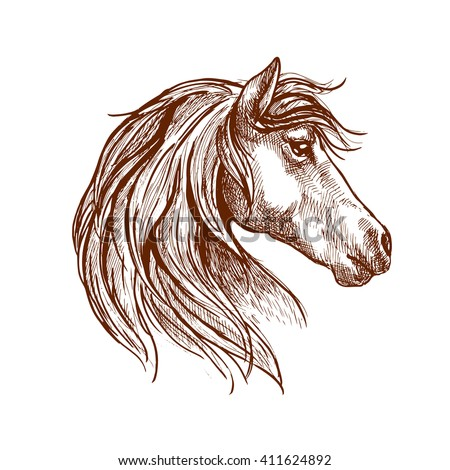 Vintage engraving sketch of wild mare head with silky mane blowing in the wind. Use as nature mascot, equestrian club or horse show design - stock vector