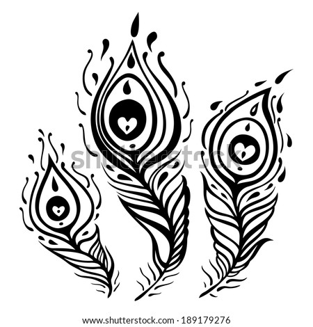 Vintage Feather vector set. Hand drawn illustration. - stock vector