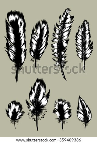 Vintage Feather vector set. Hand-drawn illustration.