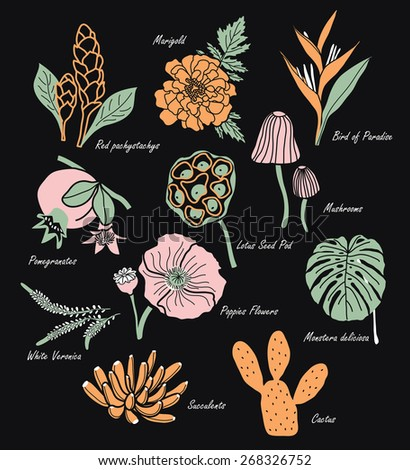 Vintage Flowers Illustration 1 - stock vector