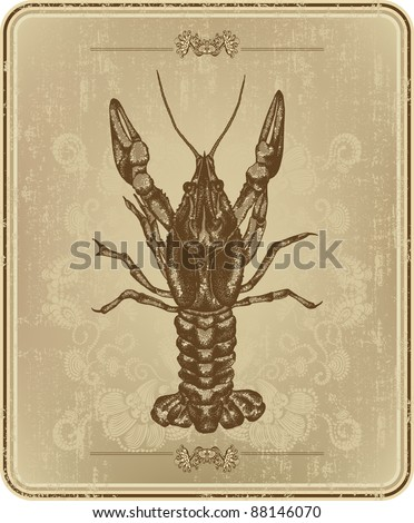 Vintage frame with crayfish, hand drawing - stock vector