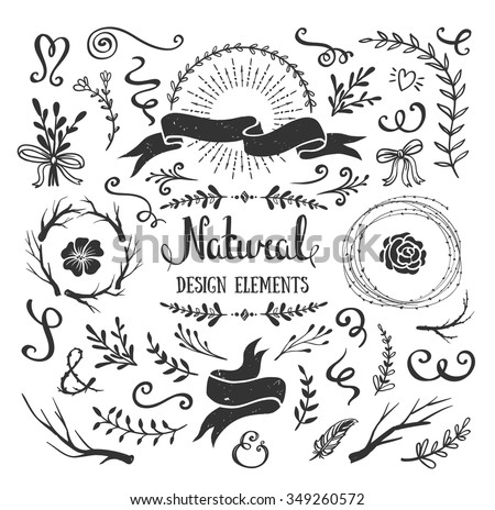Vintage graphic set of flowers, branches, leafs and rustic design elements. Isolated floral shapes for crafting bouquets, frames, borders. Vector illustration - stock vector