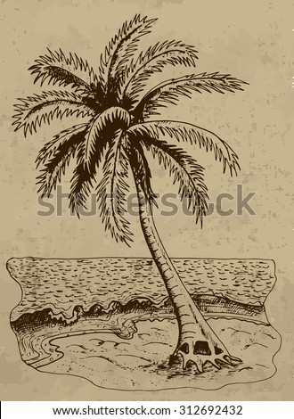 Vintage hand drawn illustration with palm on a sea shore on brown background