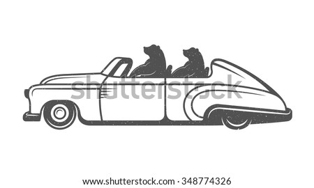 Vintage Illustration fun bear with grunge effect for posters and t-shirts. Funny bear on car on a white background