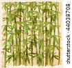 vintage illustration of the bamboo forest eps 10 - stock photo