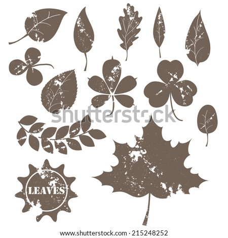 vintage leaves vector collection. for web design labels and logs page decoration. eps 10. fully editable - stock vector