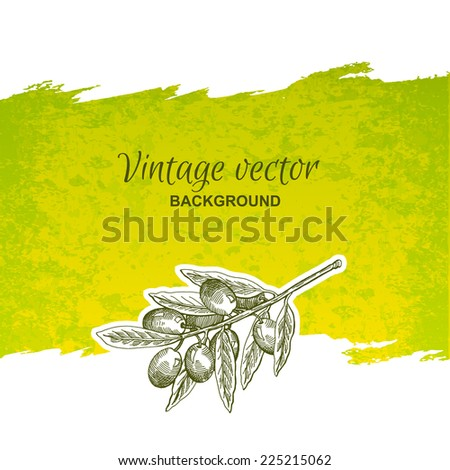Vintage olives hand drawn graphics, label - stock vector