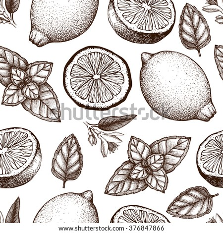 Vintage pattern design with herbal tea ingredients - lemon and mint.  Vector seamless background with ink hand drawn herbs and spice sketch isolated on white  - stock vector