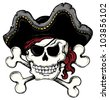 Vintage pirate skull theme 1 - vector illustration. - stock photo