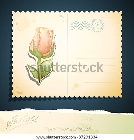 Vintage postcard with rose. Vector background