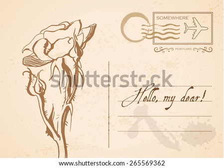 Vintage postcard with rose. Vector illustration