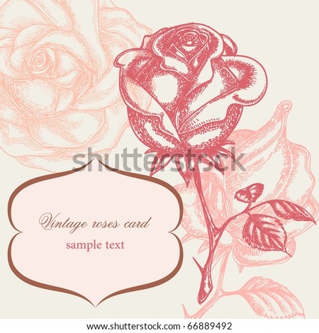 Vintage rose floral card (not auto-traced) - stock vector