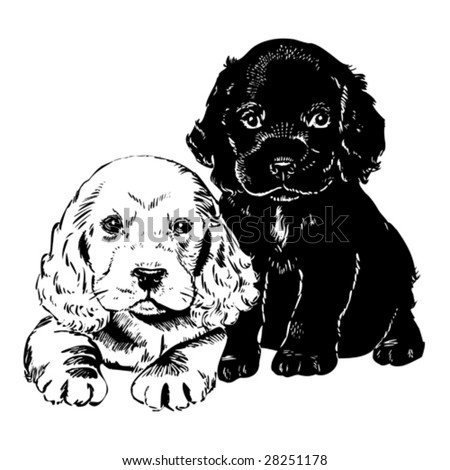 Vintage 1950s cute puppies; Detailed black and white from authentic hand-drawn scratchboard. - stock vector