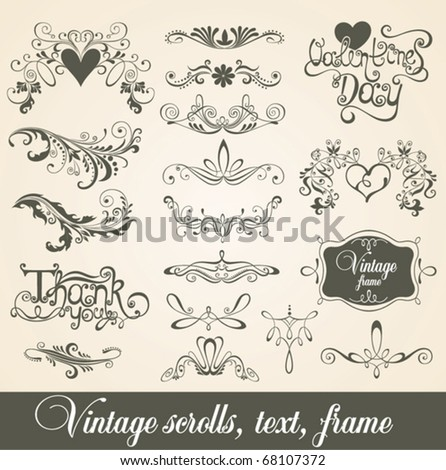Vintage scrolls, text, frame. Design elements and page decoration. - stock vector