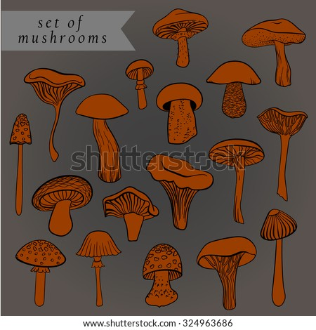 Vintage set of different hand drawn mushrooms in red tones