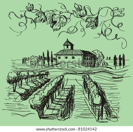 vintage vector hand drawn vineyard - stock vector