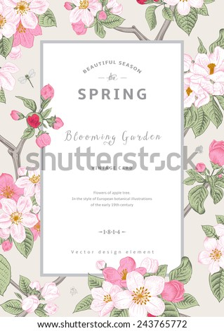 Vintage vector vertical card spring. Branch of apple tree blossoms pink flowers on gray background. - stock vector