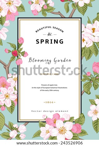 Vintage vector vertical card spring. Branch of apple tree blossoms pink flowers on mint background. - stock vector