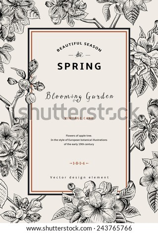 Vintage vertical spring card. Branch of apple tree blossoms. Black and white vector illustration. - stock vector