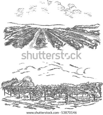Vintage - vineyard and castle (label design) - stock vector
