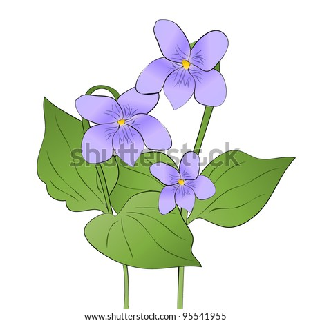 violet spring flowers - stock vector