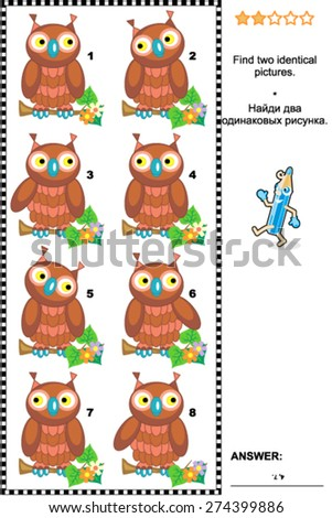 Visual puzzle: Find two identical pictures of cute wise owls. Answer included.  - stock vector