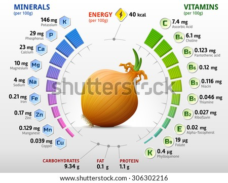 Vitamins and minerals of common onion. Infographics about nutrients in shallot bulb. Qualitative vector illustration about onion, vitamins, vegetables, health food, nutrients, diet, etc - stock vector
