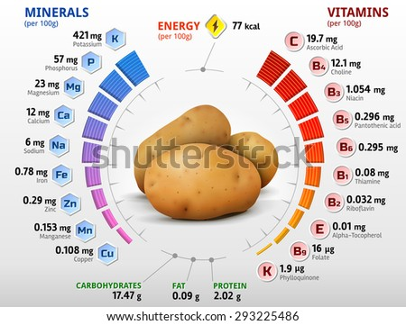 Vitamins and minerals of potato tuber. Infographics about nutrients in potato. Qualitative vector illustration about potato, vitamins, vegetables, health food, nutrients, diet, etc - stock vector