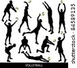volleyball - stock