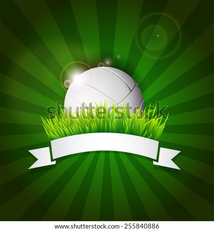 Volleyball ball on field grass with white ribbon and lights effect - stock vector